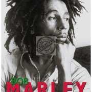 Mini muurplaatje Bob Marley 15x20cm