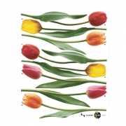 Muurstickers tulpen 54 cm