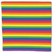 Regenboog bandana 55 x 55 cm