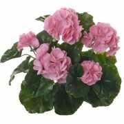 Kunst Franse Geranium roze 35 cm